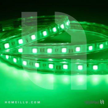watermark-light5.jpg
